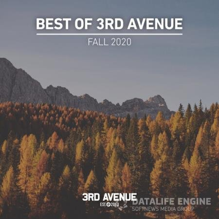 Best of 3rd Avenue: Fall 2020 (2020)